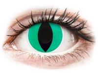 Kontaktlinsen online - ColourVUE Crazy Lens - Anaconda - ohne Stärke