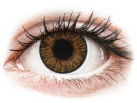 Kontaktlinsen online - FreshLook ColorBlends Honey - ohne Stärke